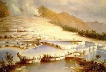 White_terraces_-_blomfield